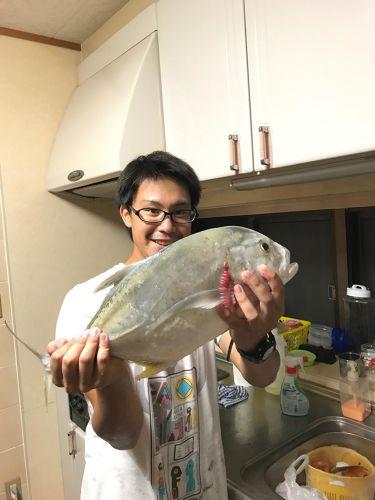 ロウニンアジの釣果