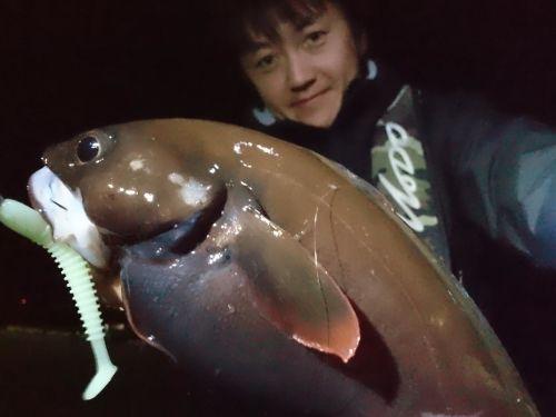 エゾイソアイナメの釣果